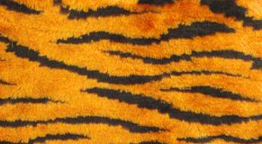 Background.tiger stripe  pattern texture. Man-made material tiger stripe  pattern fur Royalty Free Stock Image