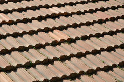 Background of the tiled roof Stock Image