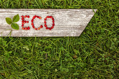 Background to promote eco-friendly products Stock Image