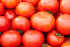 Background of tomatoes Stock Image
