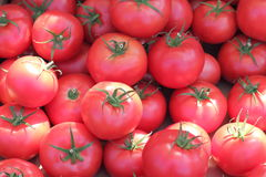 Background tomatoes Royalty Free Stock Photo