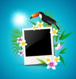 Background with toucan and flowers Royalty Free Stock Photos