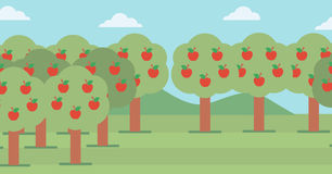 Background of  trees with red apples. Royalty Free Stock Image