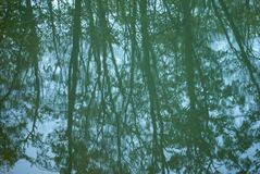 Background - the trees are reflected in the water stock image