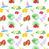 The background tropical Stock Image