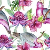 Background of tropical elements of birds and flowers. Seamless pattern. Watercolor illustration Royalty Free Illustration