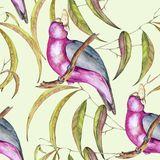Background of tropical elements of birds and flowers. Seamless pattern. Watercolor illustration Vector Illustration