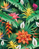 Background from tropical flowers Royalty Free Stock Photos