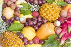 Background with tropical fruit Stock Photo