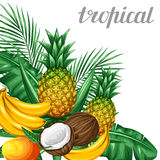 Background with tropical fruits and leaves. Design for advertising booklets, labels, packaging, menu Royalty Free Stock Photos