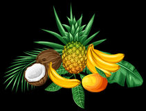 Background with tropical fruits and leaves. Design for advertising booklets, labels, packaging, textile printing Stock Photos