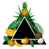 Background with tropical fruits and leaves. Design for advertising booklets, labels, packaging, textile printing Stock Photo