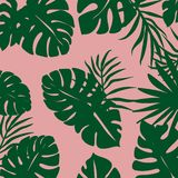 background of tropical leaves in combination with pink color stock illustration