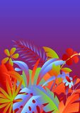 Background with tropical leaves and flowers. stock images