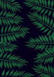 Background of tropical palm leaves in dark blue and green colors, grunge texture, beautiful illustration Stock Image
