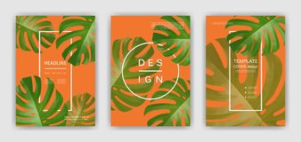 Background with tropical palm leaves. Exotic tropical plants. royalty free illustration