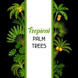 Background with tropical palm trees. Exotic tropical plants Illustration of jungle nature.  stock illustration