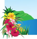 Background with tropical plants Royalty Free Stock Photo