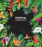 Background with tropical plants. And flowers Royalty Free Stock Images