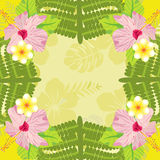 Background Tropical plants and flowers Pattern. Royalty Free Stock Image