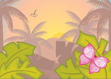 Background with tropical plants and trees.Morning. Royalty Free Stock Images