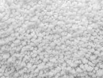 Background of true snow texture. Background of true snow texture in white tone Stock Photography