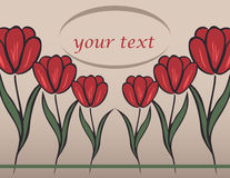 Background with tulip Royalty Free Stock Photography