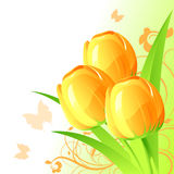 Background with tulips Stock Photos