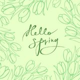 Background with tulips in the style of hand-drawn with the inscription `hello, spring`. Vector image in green color royalty free illustration