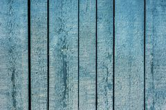 The background is turquoise and the color of old painted wooden boards. Wooden background blue with peeling paint from long boards