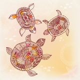 Background with turtle. Vector illustration Royalty Free Stock Photos
