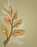 Background with twig Royalty Free Stock Images