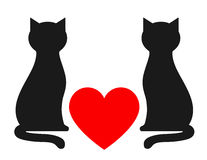 Background with two cats Stock Photo