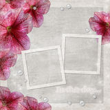 background with two frames and flowers Royalty Free Stock Photos