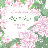 Background with two pink  peonies and pink flowers Royalty Free Stock Photography