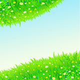 Background two spheres from green plants Royalty Free Stock Photo