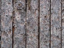 Background Of Unpeeled Logs Stock Images
