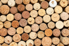 Background of used wine corks, wall of many different wine corks closeup Royalty Free Stock Photo