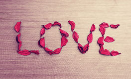 Background Valentine's Day. word love petals of red roses on a w Stock Image