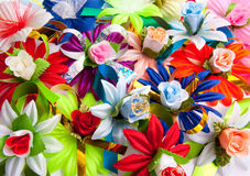 Background from varicoloured flowers Royalty Free Stock Photos