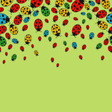 Background with variegated ladybugs. Variegated Ladybug Pattern on a green background Royalty Free Stock Image