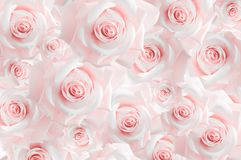 Background from variety of pink rosebuds. Wallpaper. Pastel shades royalty free stock photography