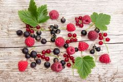 Background of the various berries on an old wooden plank. Background of the various berries and some leaves on an old wooden plank stock image