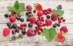 Background of the various berries on an old wooden plank. Background of the various berries and some leaves on an old wooden plank royalty free stock image
