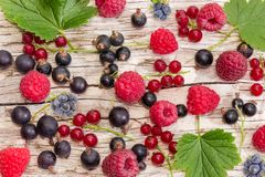 Various berries on an old wooden plank close-up. Background of the various berries and some leaves on an old wooden plank close-up stock image