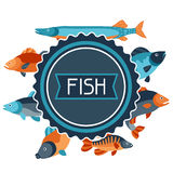 Background with various fish. Image for advertising booklets, banners, flayers, article and social media Royalty Free Stock Images