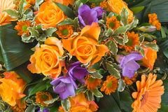 Background of various flowers. Holiday background of various flowers Royalty Free Stock Image