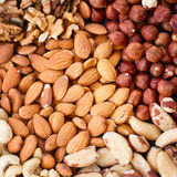 Background from various kinds of nuts Stock Photos