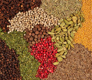 Background of various kinds of spices Royalty Free Stock Images