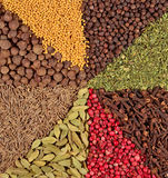 Background of various kinds of spices Royalty Free Stock Photography